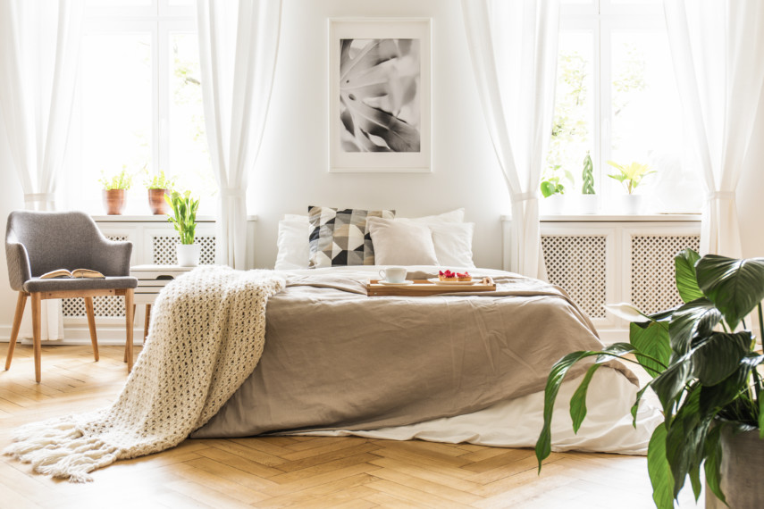 Bed between two large windows with plants